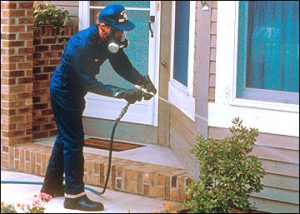 spraying perimeter of a home