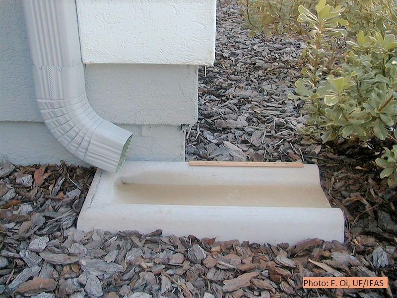 Splash block to divert water from gutter away from home.